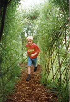 boy in willow tunnel